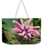 From Bud To Bloom - Bee Balm Named Panorama Pink Weekender Tote Bag