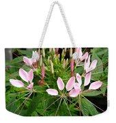 From Bud To Bloom - Cleome Named Pink Queen Weekender Tote Bag