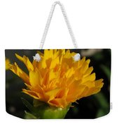 From Bud To Bloom - Coreopsis Named Early Sunrise Weekender Tote Bag