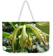 From Bud To Bloom - Gloriosa Named Rothschildiana Weekender Tote Bag