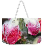 Frost Bears Down On Snapdragon Named Floral Showers Red And Yellow Bicolour Weekender Tote Bag