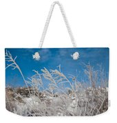 Frost Covered Grasses Against The Sky Weekender Tote Bag