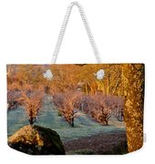 Frost In The Valley Of The Moon Weekender Tote Bag by Bill Gallagher