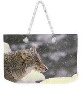 Frosty Coyote Weekender Tote Bag