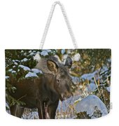 Frosty Nose Weekender Tote Bag
