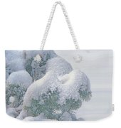Frozen Beauty Weekender Tote Bag