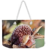 Frozen Dew Drops Melt From Canna Lily Seed Pods Weekender Tote Bag