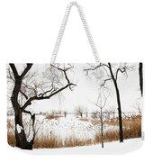 Frozen Marshland IIi Weekender Tote Bag