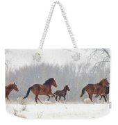 Frozen Track Weekender Tote Bag by Mike  Dawson