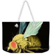 Fruit Fly Sem Weekender Tote Bag