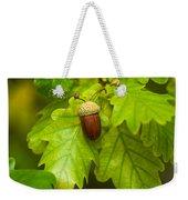 Fruit Of An Oak Tree Ripe In Autumn Weekender Tote Bag