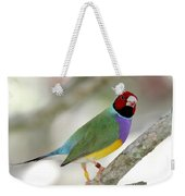 Full Of Color Weekender Tote Bag