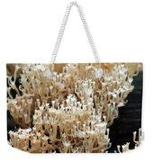 Fungus 10 Weekender Tote Bag