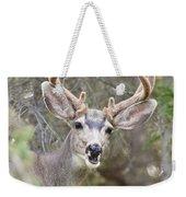 Funny Mule Deer Buck Portrait With Velvet Antler Weekender Tote Bag