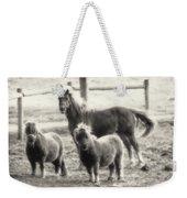 Fuzzy Ponies Weekender Tote Bag