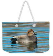 Gadwall Duck Drake Swimming Weekender Tote Bag