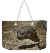 Galapagos Giant Tortoise Weekender Tote Bag