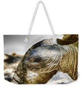 Galapagos Giant Tortoise V2 Weekender Tote Bag