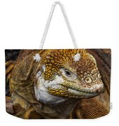 Galapagos Land Iguana  Weekender Tote Bag by Allen Sheffield