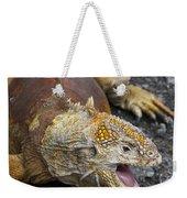 Galapagos Land Iguana Weekender Tote Bag