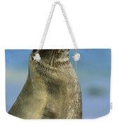 Galapagos Sea Lion Coral Beach Weekender Tote Bag