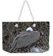 Galapagos - Watchful Pelican Weekender Tote Bag