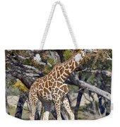 Galloping Giraffe  Weekender Tote Bag