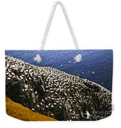 Gannets At Cape St. Mary's Ecological Bird Sanctuary Weekender Tote Bag