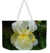 Garden Fairy Of Sunset Weekender Tote Bag