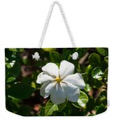 Gardinia At Twilight 1 Weekender Tote Bag