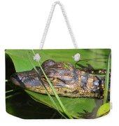 Gator Baby's Head Weekender Tote Bag