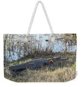 Gator Football Weekender Tote Bag by Al Powell Photography USA