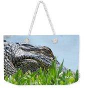 Gator Watching Weekender Tote Bag