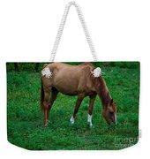 Gazing Horse Weekender Tote Bag