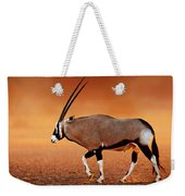 Gemsbok On Desert Plains At Sunset Weekender Tote Bag