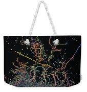Genesis Weekender Tote Bag by James W Johnson