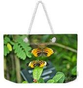 Gentle Butterfly Courtship 01 Weekender Tote Bag