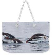 Gentoo Penguins Porpoising Paradise Bay Weekender Tote Bag