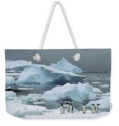Gentoo Penguins With Icebergs Antarctica Weekender Tote Bag