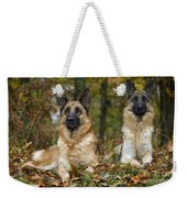 German Shepherd Dogs Weekender Tote Bag