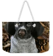 German Wire-haired Pointer Puppy Weekender Tote Bag