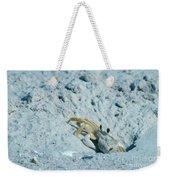 Ghost Crab Weekender Tote Bag