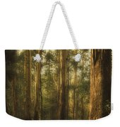 Ghostly Weekender Tote Bag by Andrew Paranavitana