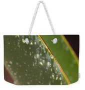 Giant Agave Abstract 4 Weekender Tote Bag