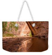 Giant Alcove Coyote Gulch - Utah Weekender Tote Bag