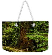 Giant Douglas Fir Trees Collection 3 Weekender Tote Bag