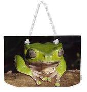 Giant Monkey Frog  Venezuela Weekender Tote Bag