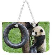 Giant Panda Cubs Weekender Tote Bag
