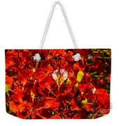 Giant Poinciana Blooms Weekender Tote Bag