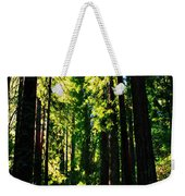 Giant Redwood Forest Weekender Tote Bag